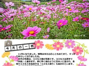 ilovepdf_com